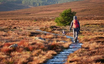 UK hiking trails by train for winter's shorter days