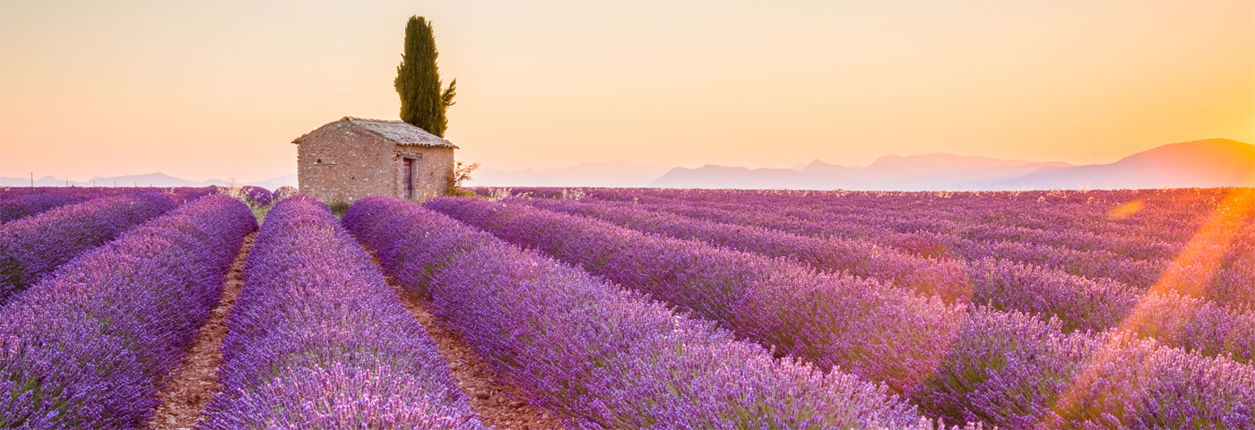 French train tickets are now on sale for travel in spring 2019.