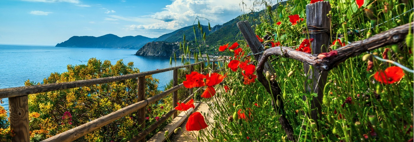 Visiting the Cinque Terre by train